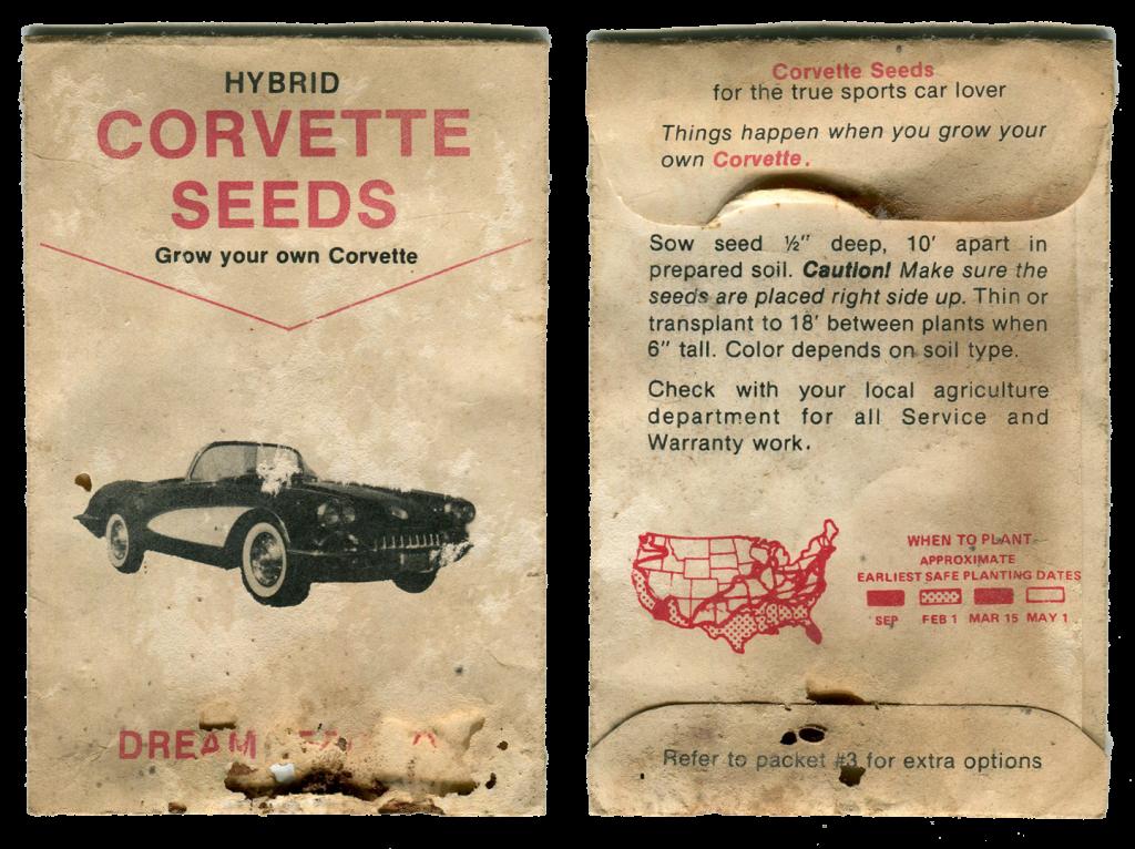 corvette-seeds